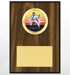 Martial Arts Plaques