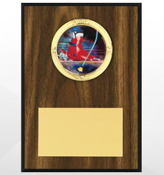 Skiing Plaques