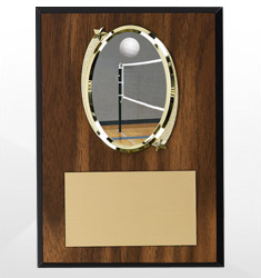 Volleyball Plaques
