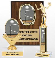 Volleyball Team Awards