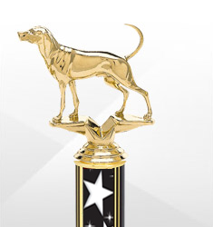 Dog Show Trophies