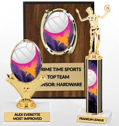 Volleyball Team Awards