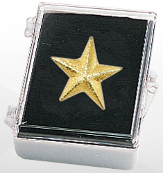 Gold Recognition Lapel Pins with Box