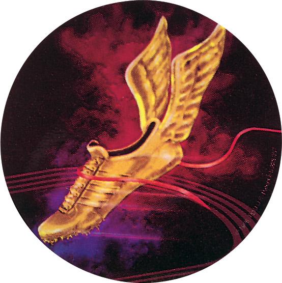 Track Holographic Emblem - HG 56