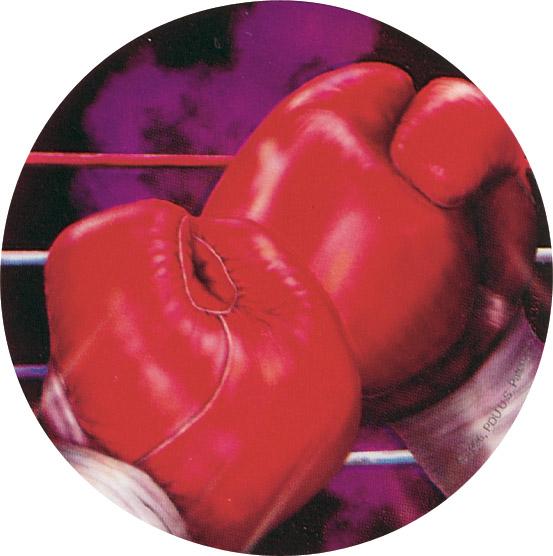 Boxing Holographic Emblem - HG 9