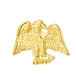 Eagle Recognition Pin