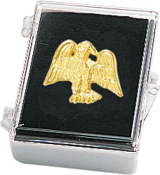 Eagle Recognition Pin with Box