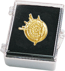 Archery Recognition Pin with Box