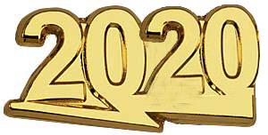 2020 Recognition Lapel Pin