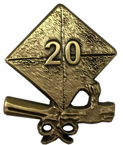 2020 Cap and Diploma Lapel Pin