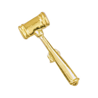 Gavel Recognition Pin