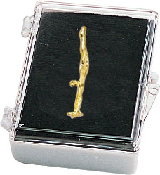 Gymnastics-Male Recognition Pin with Box