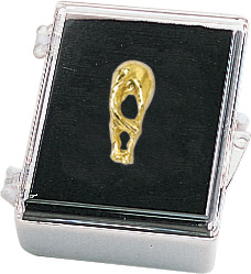 Horses Rear Recognition Pin with Box