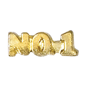 No. 1 Recognition Pin