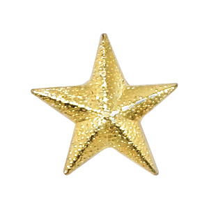 Star Recognition Pin