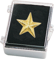 Star Recognition Pin with Box