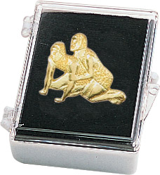 Wrestling Recognition Pin with Box