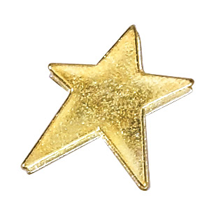 Modern Star Recognition Pin