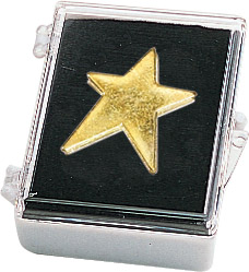 Modern Star Recognition Pin with Box