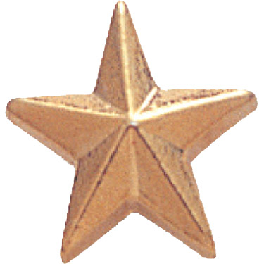 Gold Star Recognition Pin