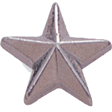 Silver Star Recognition Pin