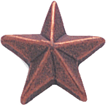 Bronze Star Recognition Pin