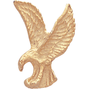 Gold Eagle Recognition Pin