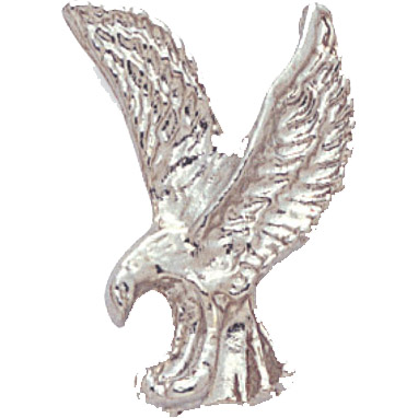 Silver Eagle Recognition Pin