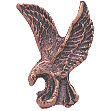Bronze Eagle Recognition Pin